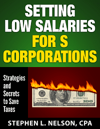 Setting Low Salaries for S Corporations